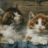 Two cats – intermediate – free patterns, free charts / diagrame gratuite, scheme goblen gratis, modele goblenuri gratis