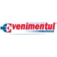 Press release: ziarulevenimentul.ro – Picturã cu acul